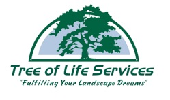 Tree of Life Services